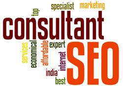 seo-consultant-india